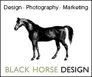 Black Horse Design (Manchester Horse)