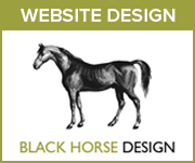 Black Horse Design Website Design (Manchester Horse)