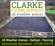 Clarke Equine Services  2018 (Manchester Horse)