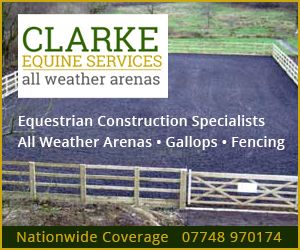 Clarke Equine Services  2019 (Manchester Horse)