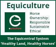 Equiculture 01 (Manchester Horse)